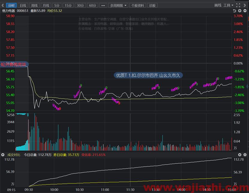 股票交易实战系列之一带量下跌